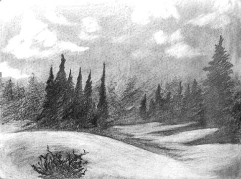 Complete landscape drawing assignment for Example of landscape drawing